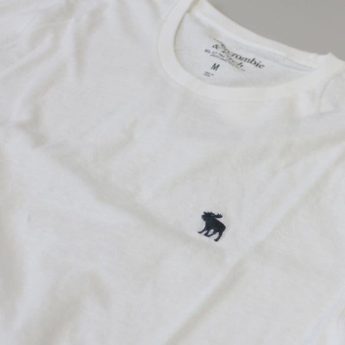 アバクロ新作メンズTシャツ
